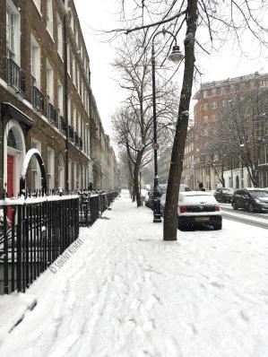 Doughty_Street